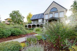 Denver Colorado Landscape Installation - The Green Fuse