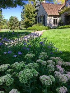 Denver Colorado Landscape Maintenance - The Green Fuse