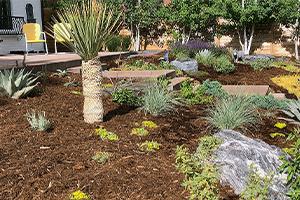 Denver Colorado Landscape Enhancements - The Green Fuse