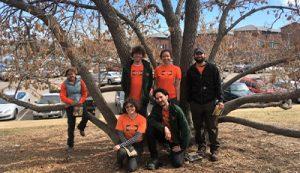 Careers at The Green Fuse Landscape Denver Colorado
